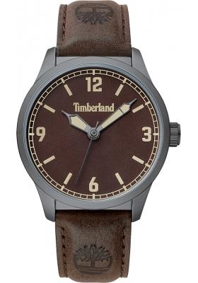 TIMBERLAND Ferrisburg TBL15904JYU/12-G Brown Leather Strap